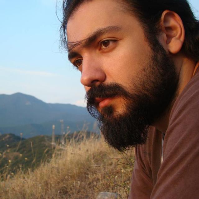 Alexander Sarkisov